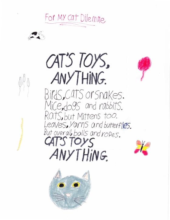 Cat's toys_20151220_0001